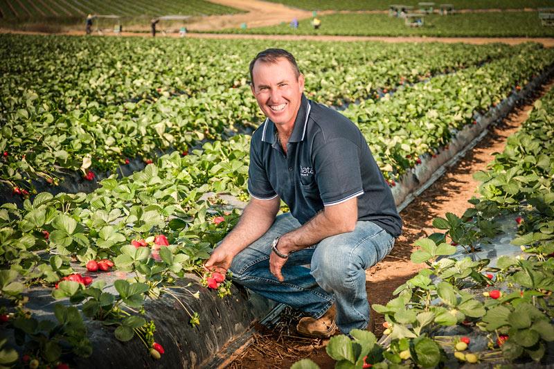 Pinata FarmsIMG 2087